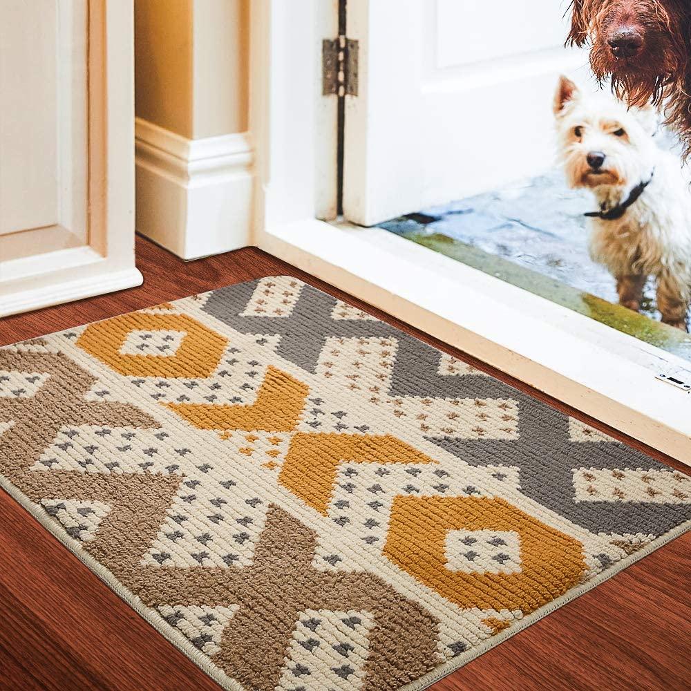Color and Geometry Indoor Doormat